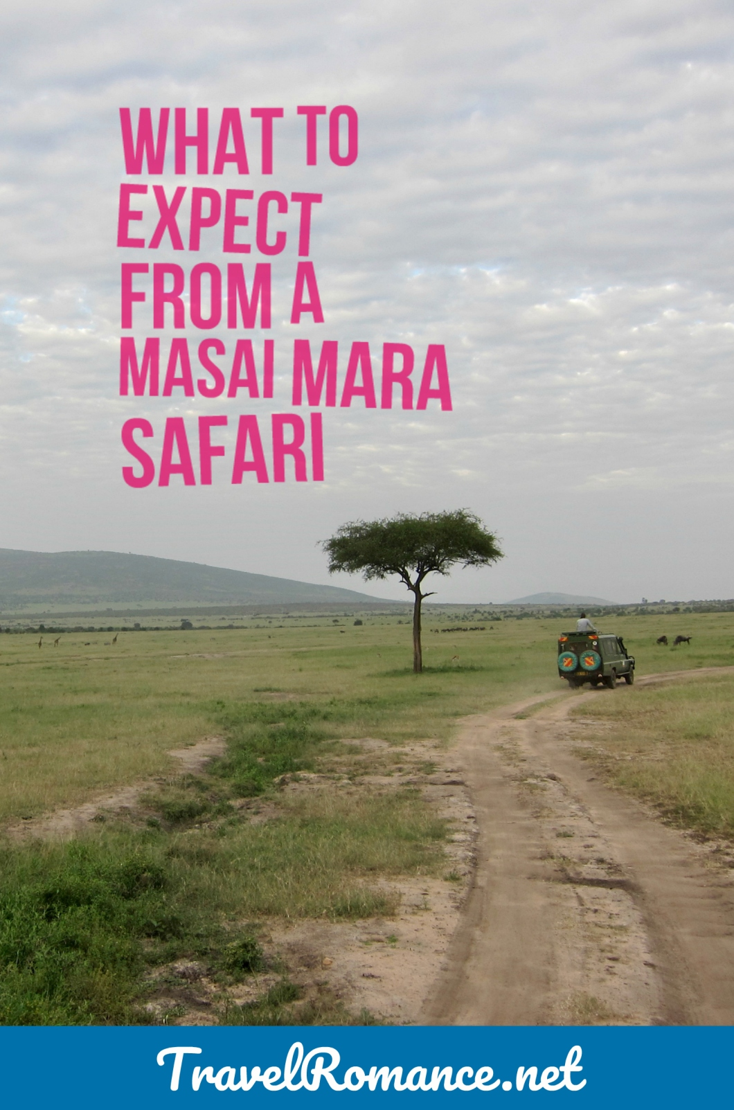 What to Expect from a Masai Mara Safari